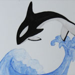 Orca and Droplet
