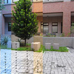 Cloudy Courtyard