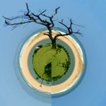 Small Planet of a Beach&Tree