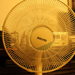 Fan High Shutter Speed