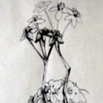 Flower Abstract Drawing