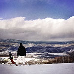 Self Learning - Fly Paper Textures