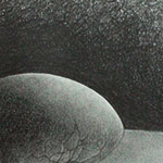 Tonal Value Egg Drawing