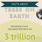 Infographic about Trees