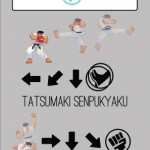 Ryu SFIII command list infographic